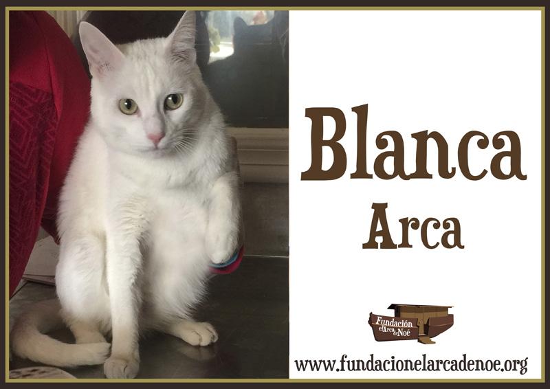 Blanca Arca