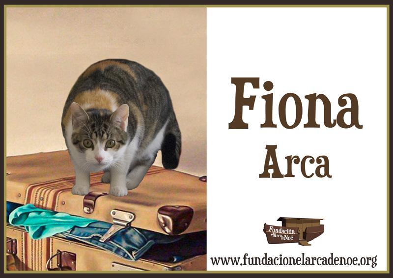 Fiona Arca
