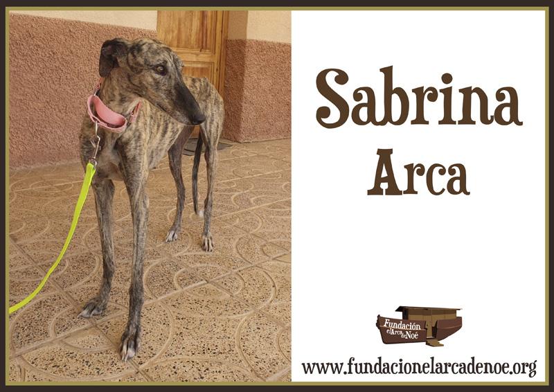 Sabrina Arca