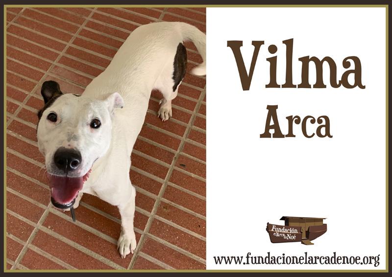 Vilma Arca